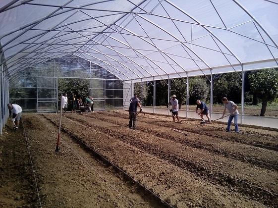 VENEZIA HOST adotta il tutor per l'integrazione della disabilità nell'agricoltura sociale